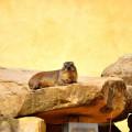Tierpark Erfurt